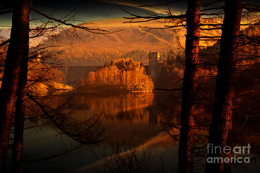 Howden Dam Pyrography - Behind The Trees by Nigel Hatton