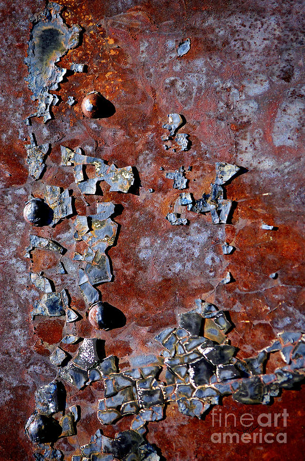 Rust Photograph - Bejeweled by Vicki Pelham