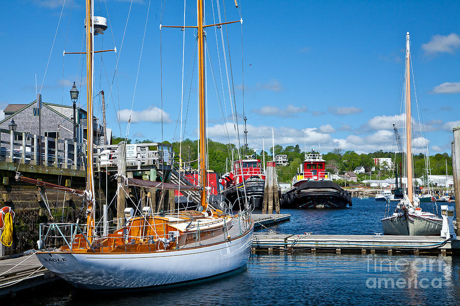 America Photograph - Belfast Harbor by Susan Cole Kelly