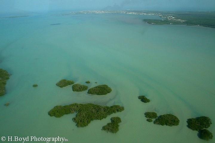 Belize Photograph - Belizean Streaks by Heather  Boyd
