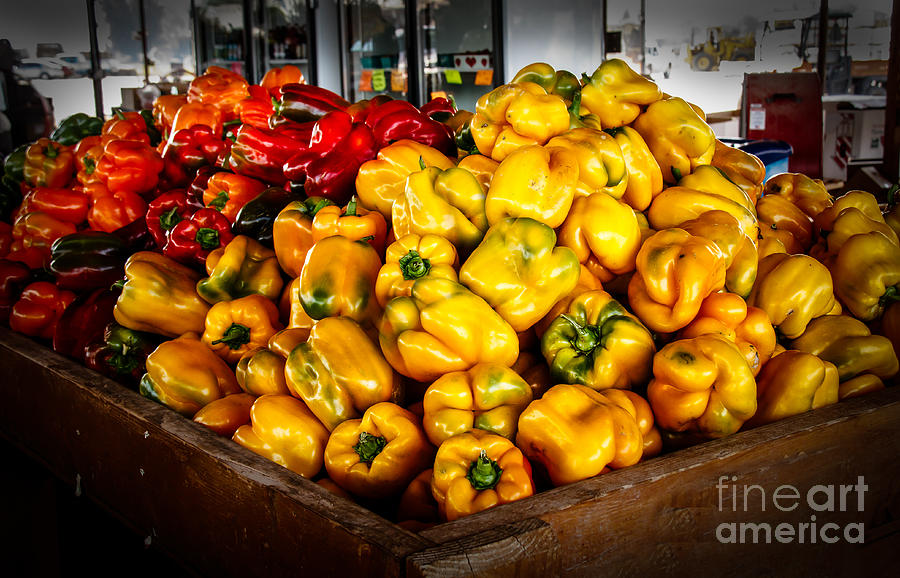Peppers Photograph - Bell Peppers by Robert Bales