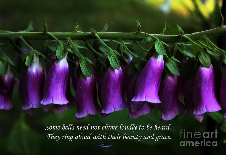 Foxgloves Photograph - Bells Of Spring by Ola Allen