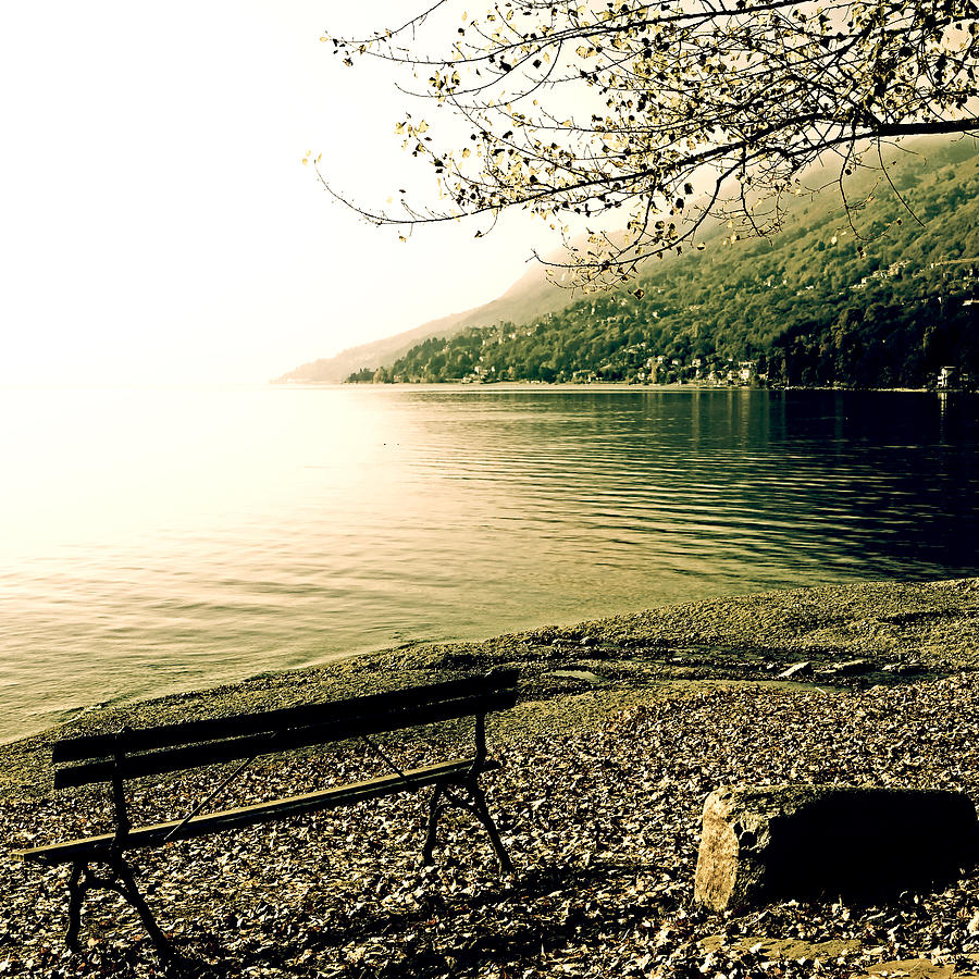 Park Bench Photograph - Bench In Autumn by Joana Kruse