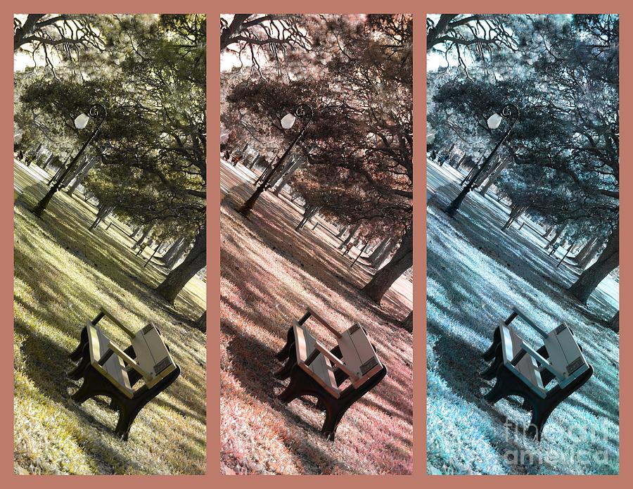 Triptych Photograph - Bench In The Park Triptych  by Susanne Van Hulst
