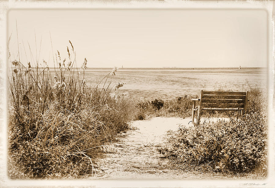Bench Photograph - Bench With A View by Rosalie Scanlon