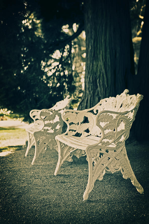 Castle Park Photograph - Benches by Joana Kruse
