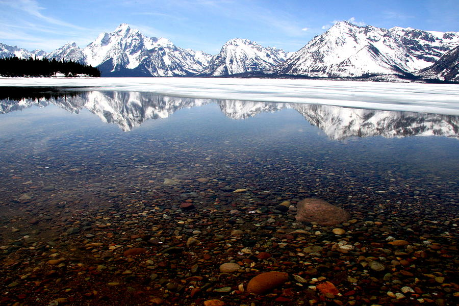 Jackson Lake Photograph - Beneath The Reflection by Darlene Chissom