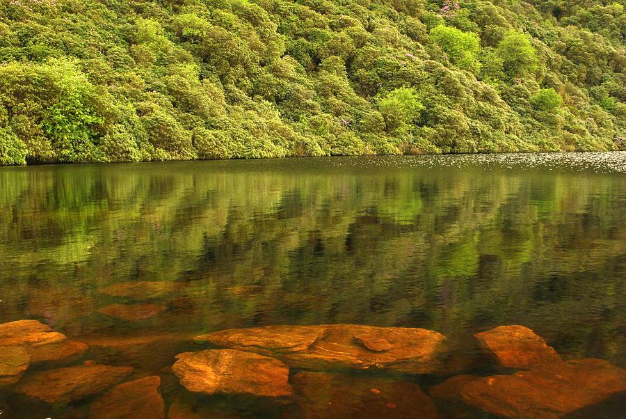 Lake Photograph - Beneath The Water by Joe Ormonde