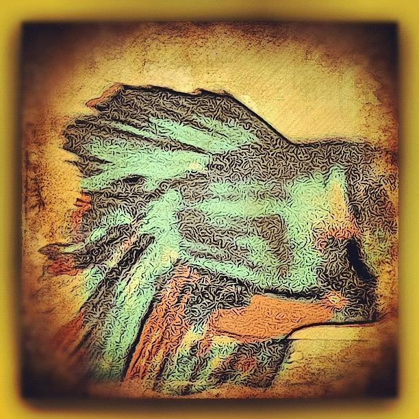 Igers Photograph - Betta by Paul Cutright