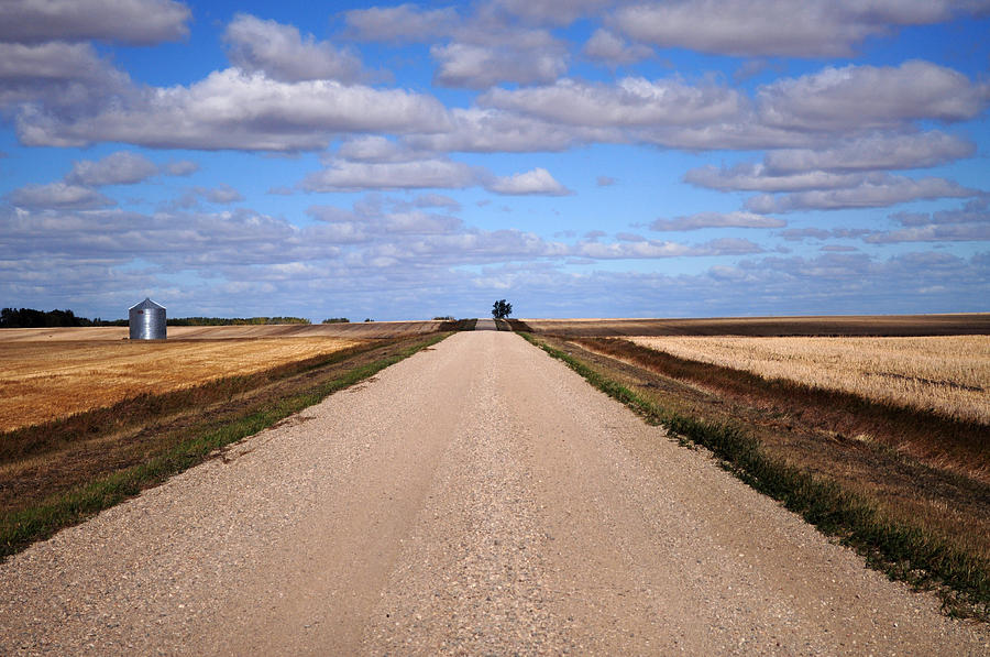 Road Photograph - Between Two Fields by Seana Stevenson