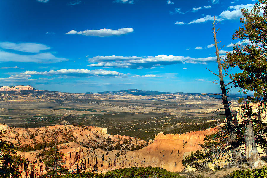 Rock Formations Photograph - Beyond Bryce by Robert Bales