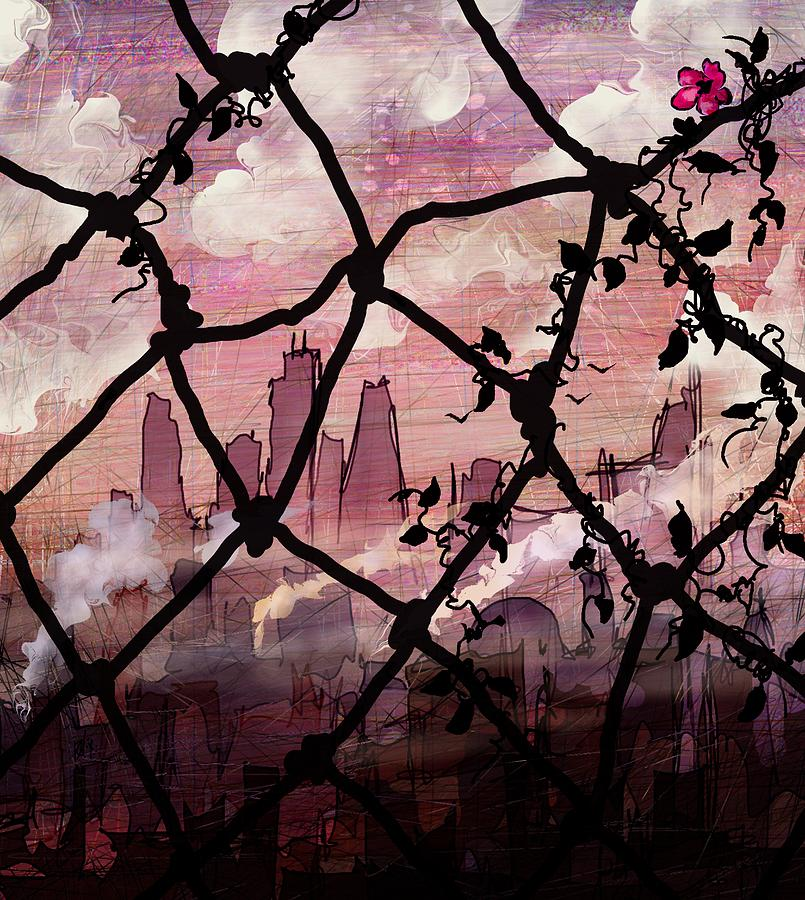 Fences Photograph - Beyond The Chain Link by Rachel Christine Nowicki