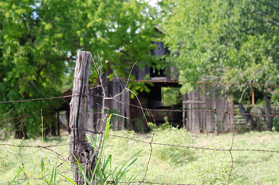 Barns Photograph - Beyond The Post by Lisa Moore