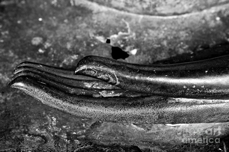 Buddha Photograph - Bhumisparsa Mudra I In Black And White by Dean Harte