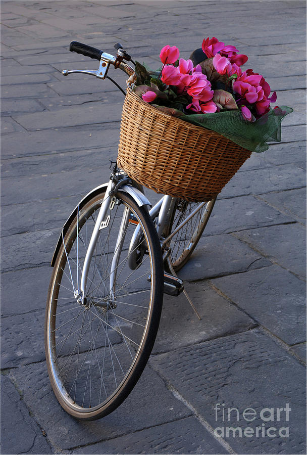 Bike Photograph - Bicycle In Lucca Italy by Bob Christopher