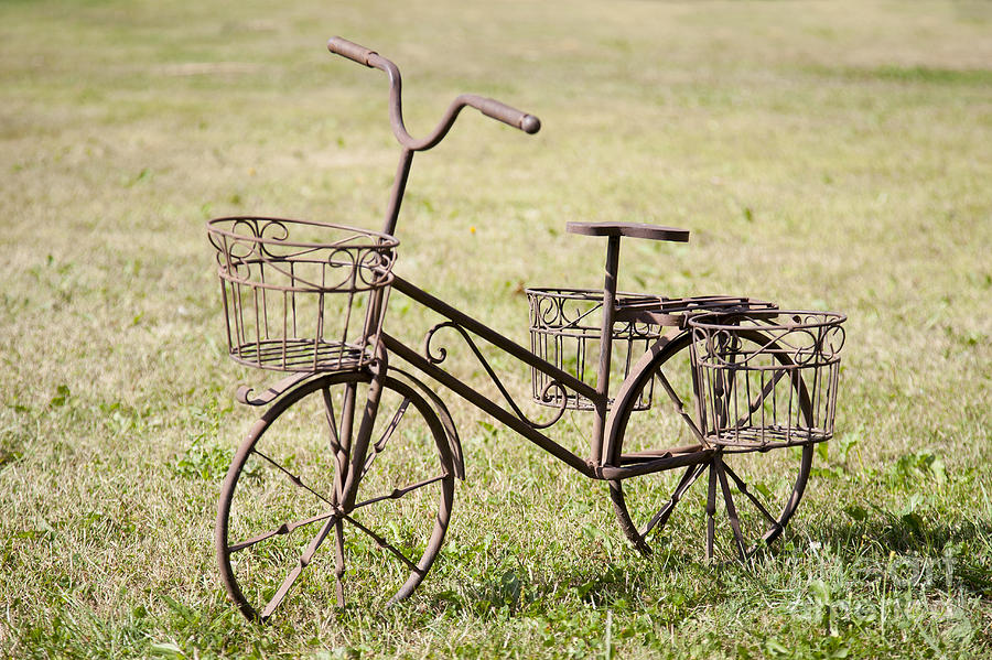 Art Photograph - Bicycle Lawn Ornament by Jaak Nilson