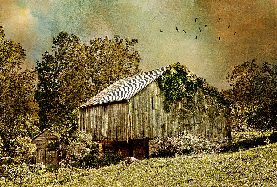 Farm Photograph - Big Barn Little Barn by Kathy Jennings