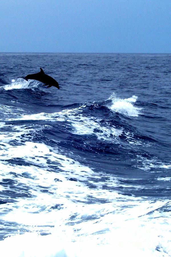 Sea Photograph - Big Blue by Sarah Clark