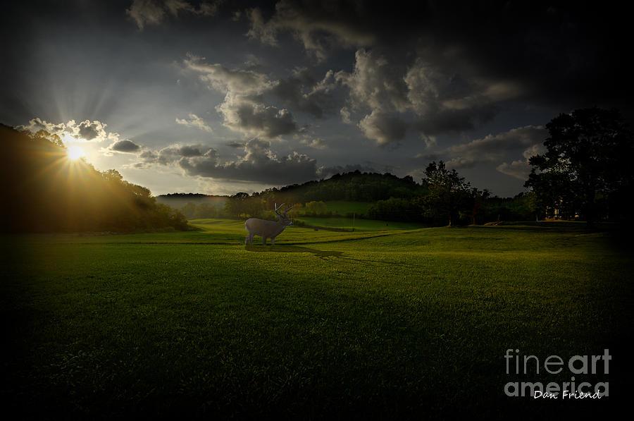 Big Buck Photograph - Big Buck In Field At Sunset by Dan Friend