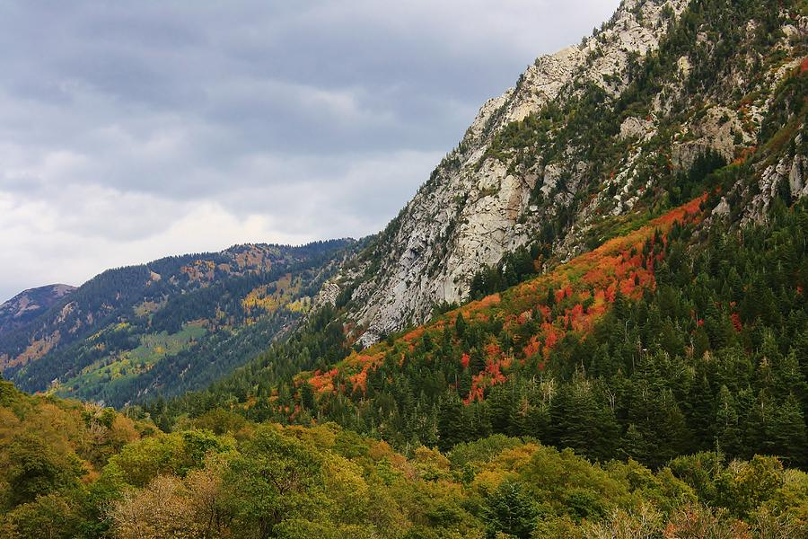 Mountains Photograph - Big Cottonwood Canyon 2 by Bruce Bley