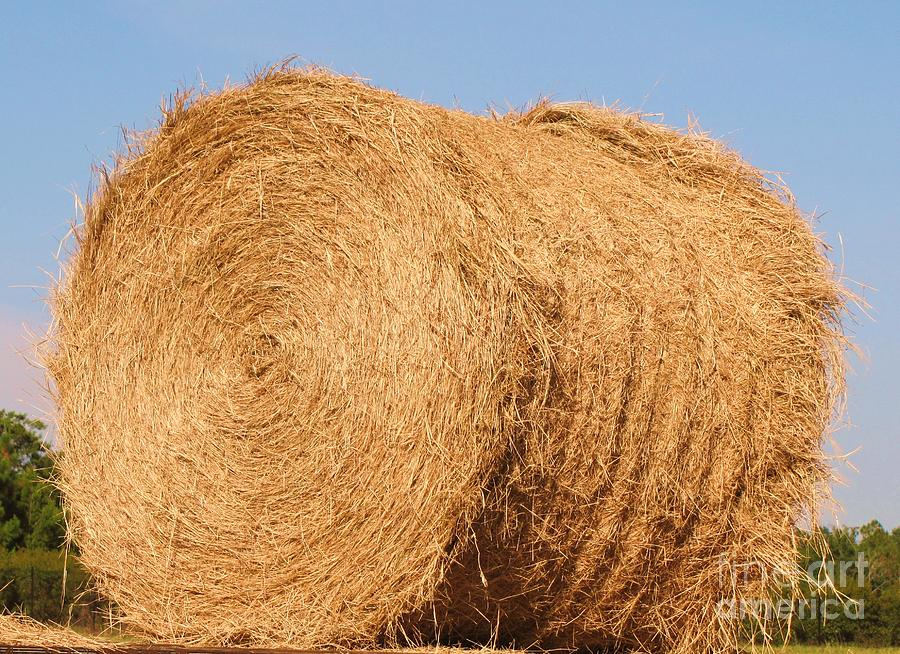 Big Hay Bail Photograph By Michelle Powell