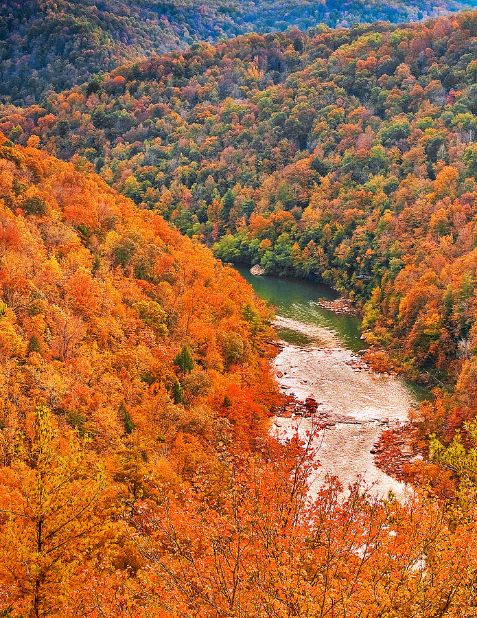 Tennessee Photograph - Big South Fork by Charles Fletcher