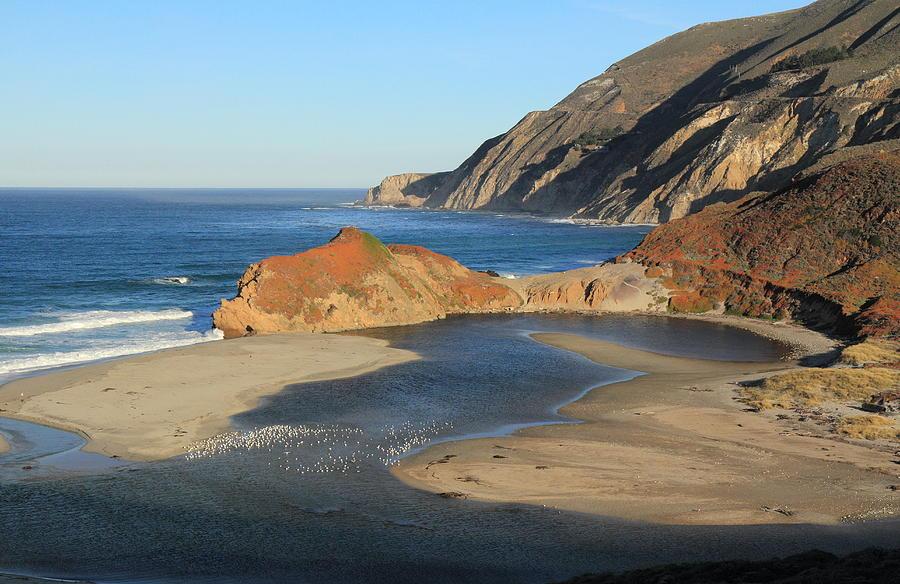 Seagulls Photograph - Big Sur by Scott Rackers