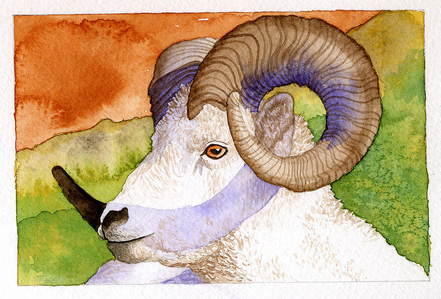 Wildlife Painting - Bighorn by Eunice Olson