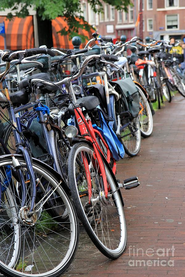Bike Photograph - Bike Frenzy by Sophie Vigneault
