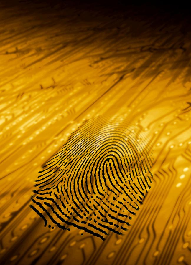 Printed Circuit Board Photograph - Biometric Security, Artwork by Victor Habbick Visions