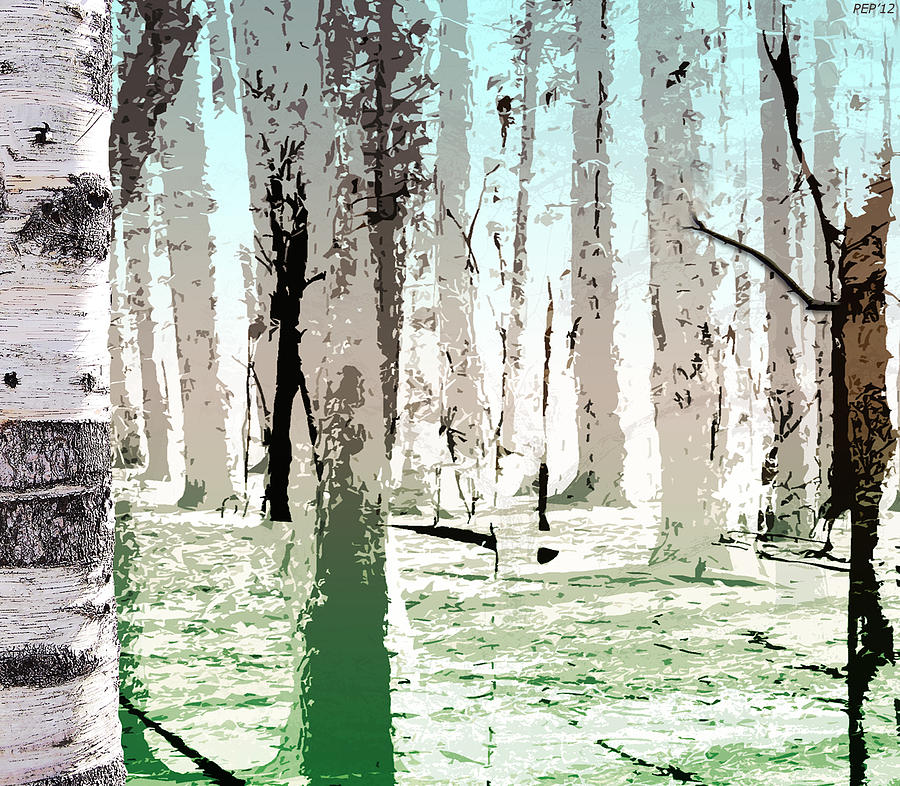 Photo Digital Art - Birch Forest by Phil Perkins