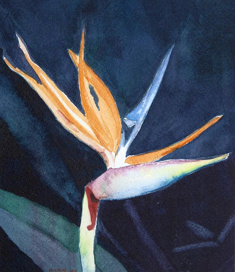 Flower Painting - Bird Of Paradise by Charlotte Hickcox
