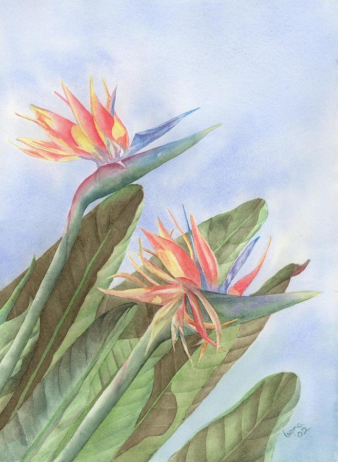 Bird Of Paradise Painting - Bird Of Paradise by Leona Jones