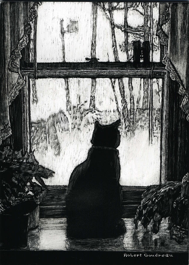 Cat In Window Drawing - Bird Watching by Robert Goudreau