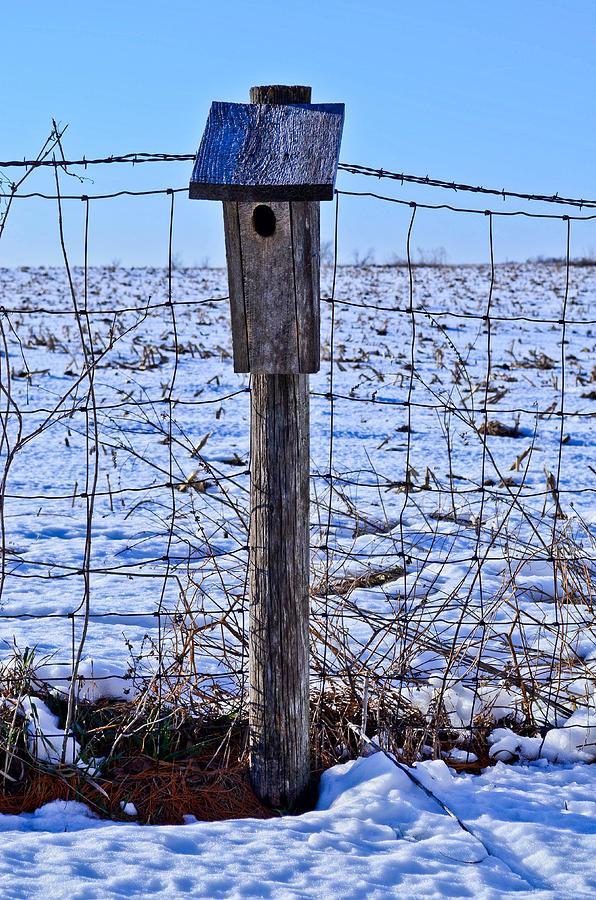 Birdhouse Photograph - Birdhouse In The Snow by Julio n Brenda JnB