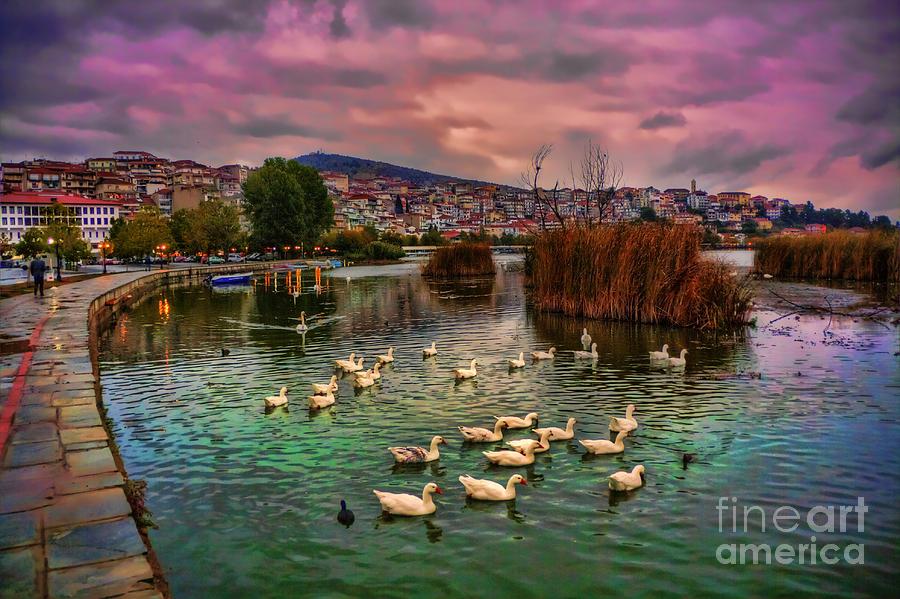 Boat Pyrography - Birds In Green Lake by Soultana Koleska