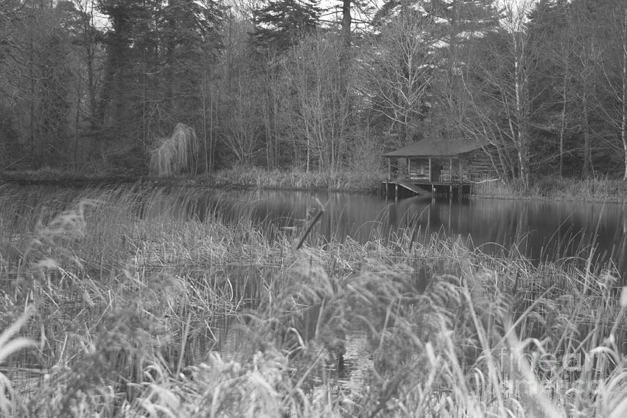 Birr Photograph - Birr Boathouse by Mike  Connolly