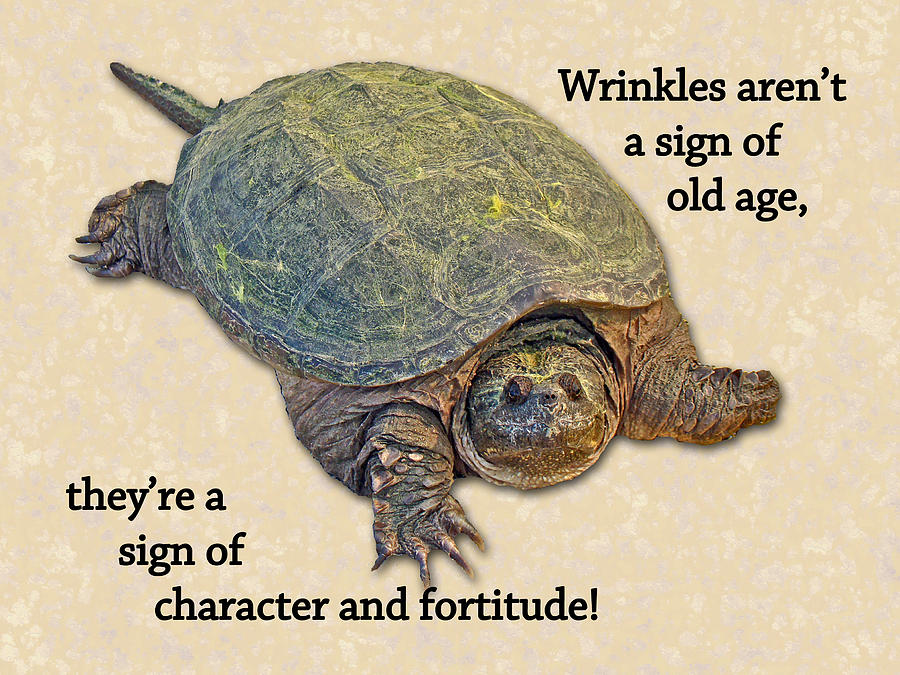 Birthday Card American Snapping Turtle Photograph by Mother Nature – Nature Birthday Card