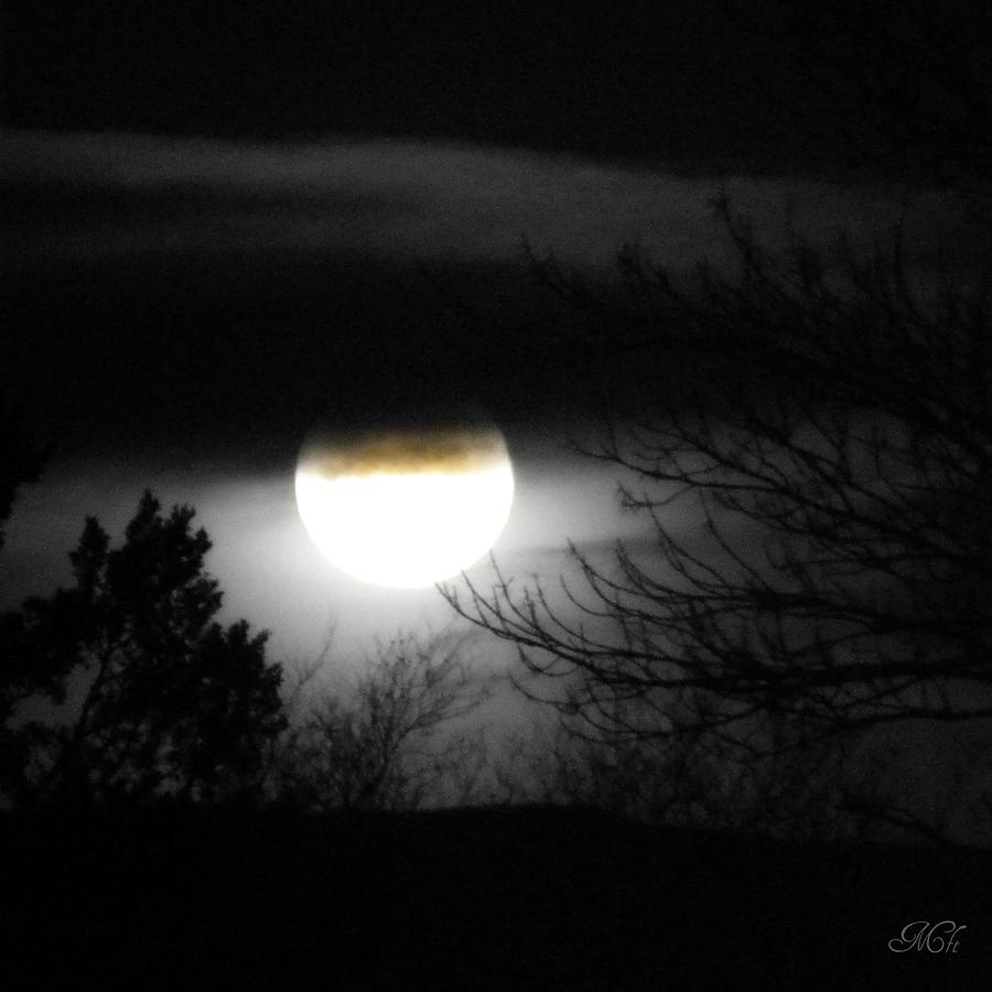Black And White Full Moon Photograph by Michelle Frizzell ...