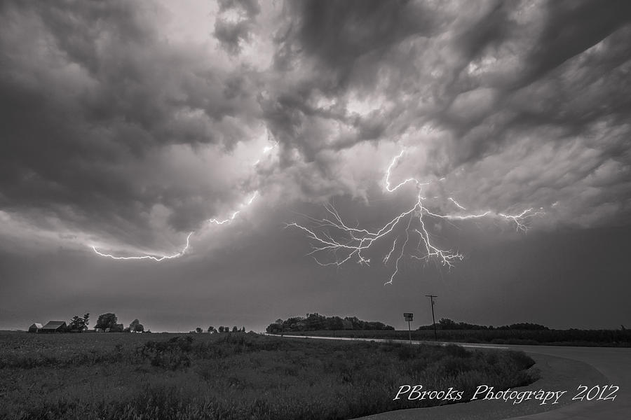 black and white lightning branches photograph by paul brooks