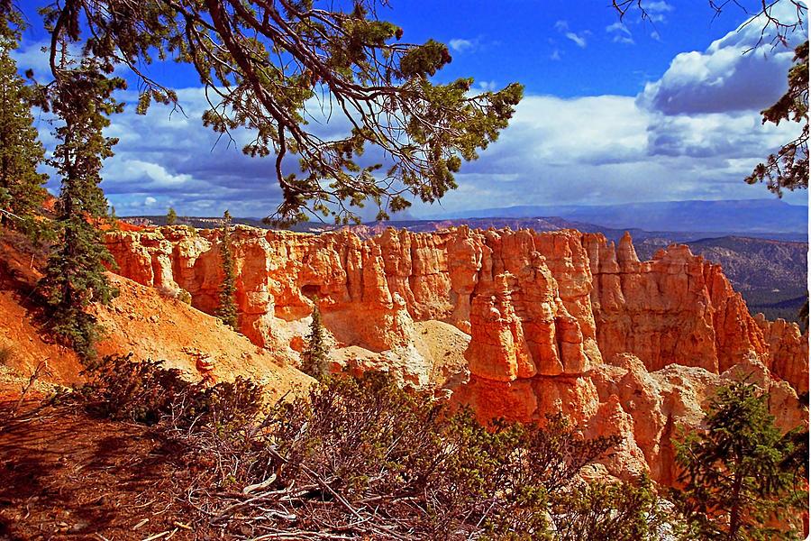 Black Birch Canyon Photograph