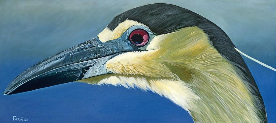 Black Capped Night Heron Painting - Black Capped Night Heron by Jon Ferrentino