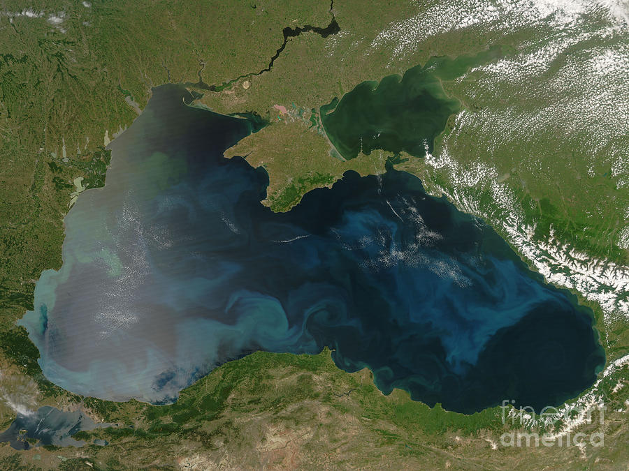 Black Sea Photograph - Black Sea Phytoplankton by Nasa