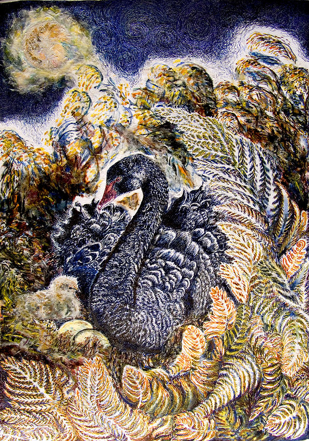 Black Swan Mother And Cygnet No 2 Drawing By Helen Duley