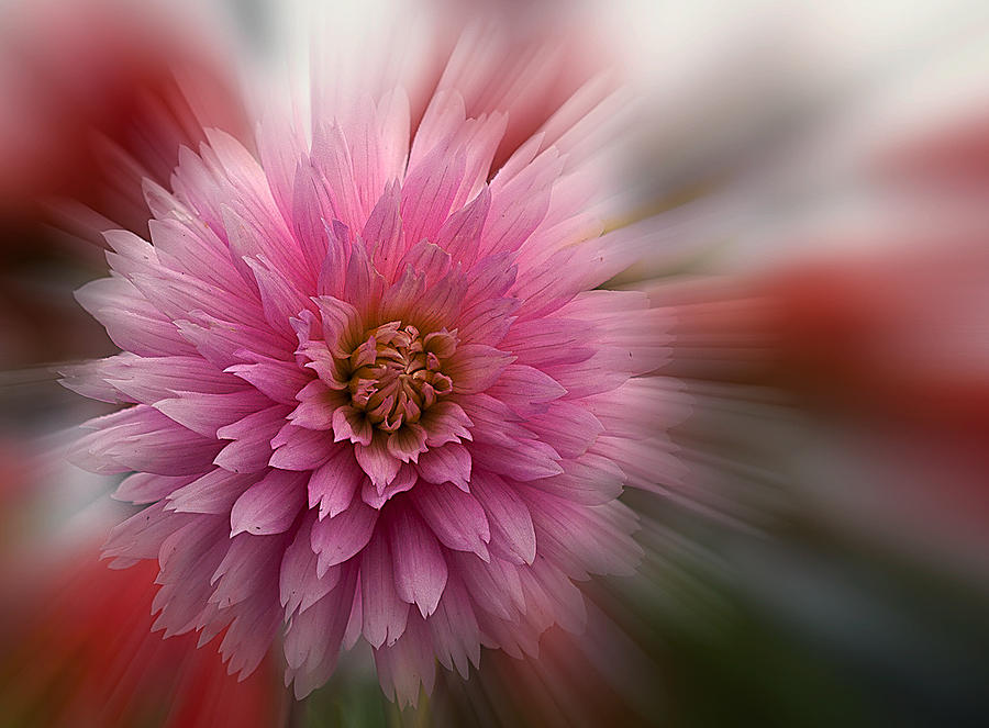 Color Photograph - Blast Off by Jean Noren