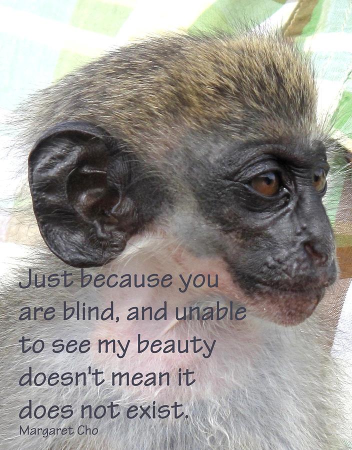 Monkey Photograph - Blind Beauty by Ian  MacDonald