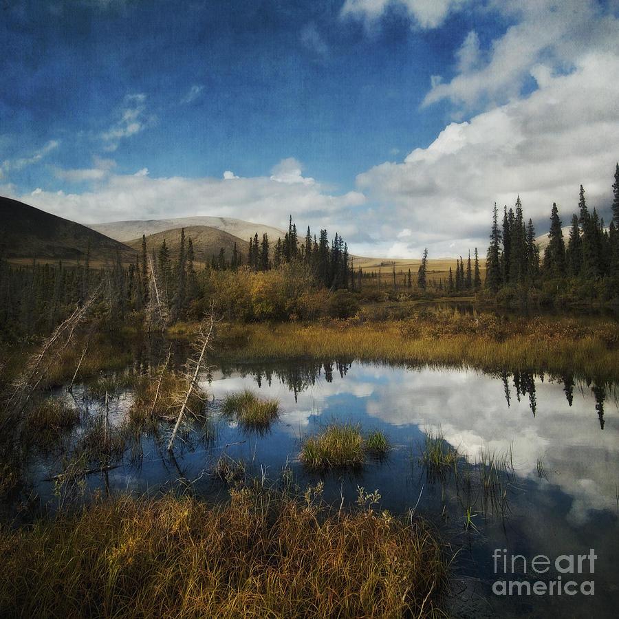 Dempster Photograph - Blissful Lone Land by Priska Wettstein
