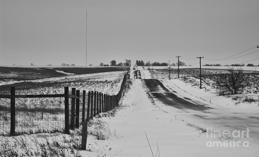 Snow Storm Photograph - Blizzard   by Wilma  Birdwell