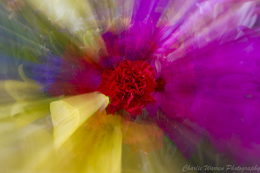 Flower Photograph - Bloom Zoom2 by Charles Warren