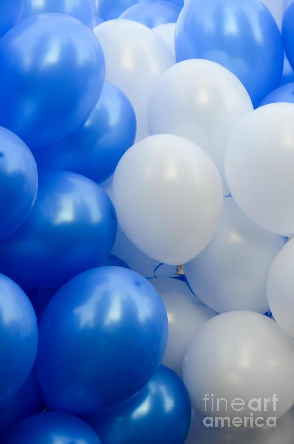 Blue And White Balloons Photograph By Amir Paz